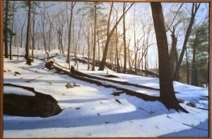 Lying Down in Snow $3000